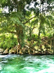 beningnya-air-di-sungai-krueng-lhok-gop-kumba
