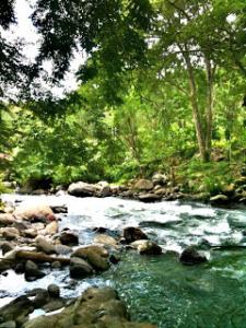 krueng-sungai-lhok-ugop-kumba-detiik-wordpress-com